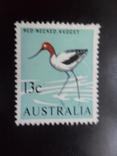 Фауна. Птицы. Австралия. MLH, фото №2