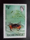 Фауна моря. Доминика. Краб. MNH, фото №2