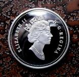 50 центов Канада 2000 серебро, фото №4