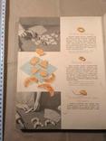 Детское питание 1966р, фото №8