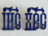 Серебрянные вставки с эмалями ІИС ХС на оклад, фото №2