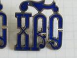 Серебрянные вставки с эмалями ІИС ХС на оклад, фото №6