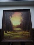 Стрий Морозов 97 Пейзаж осени, фото №3