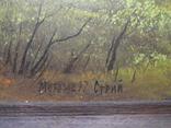 Стрий Морозов 97 Пейзаж осени, фото №5