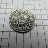 Полугрош  Сигизмунд I Старый, фото №4