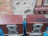 Колонки Амфитон АС35-018, фото №3