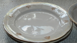 Четыре тарелки и пиала дружковский ф/з, фото №6