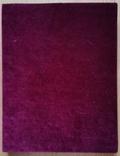 Ікона Казанської Богородиці, 21,9х17,1х2,5 см, фото №12
