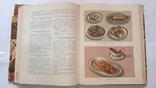Кулинария. Госторгиздат 1964 г., фото №8