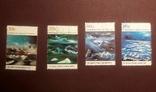 Серия марок 1989 г. Антарктические территории Австралии, фото №3