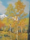 Картина из камня 45х35 см, фото №3