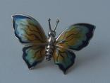 Метелик в емалях., фото №2