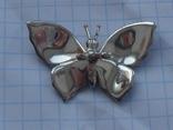 Метелик в емалях., фото №3