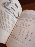 1994 Карточные игры. Хьюберт Филлипс/The Pan Book of Card Games/карты, фото №8
