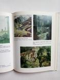 1991 Акварельная живопись для архитекторов. А.А. Горбенко, фото №4