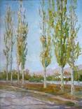 Костюченко А.П.(1930-2006) Тополя. 1965г., фото №2