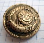 Пуговица 16 лент в гербе, фото №3