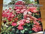 В.С. Высоцкий-разное. 33 об.-(информация по фото), фото №5