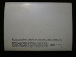 Комплект открыток СССР. Залы Эрмитажа. 1977г., фото №3