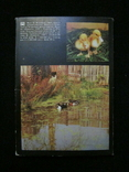Комплект открыток СССР. Птичий двор. 1989г., фото №3