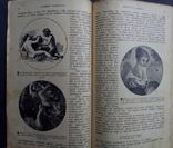 Эмоции и их культура 1907 Психология с рисунками, фото №7