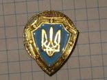 Знак щит с Тризубцем фото 6