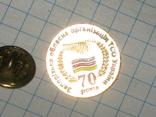 Знак Запорізька обласна організація ТСО України фото 2