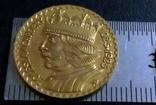 20 злотих  золотом1925 року , Польща ,  копія золотої не магнітний, позолота 999, фото №2