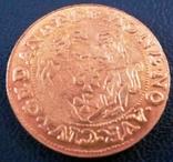 1 дукат  золотом1546  року , Польща ,  копія золотої не магнітний,   позолота 999, фото №2
