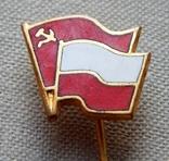 Радянсько-Польська дружба. Голка., фото №3