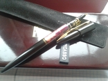 Ручка пір'яна PICASSO, фото №6