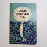 1979 Блюда из морских рыб Сметанкин А.И., рецепты, кулинария, фото №2