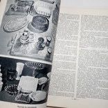 2 ТОМА Краткая энциклопедия домашнего хозяйства, фото №12