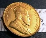 1/2 піастра золотом  1908 року - Британські Кіпрські острови /позолота 999/  копія, фото №3