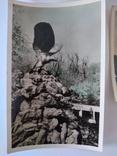 Железноводск, 4 поштові відкритки, 1958 рік., фото №5