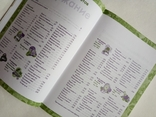 2008 Медицинская энциклопедия. Лечение домашними средствами. 2005 практических советов., фото №4