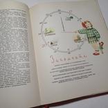 1959 Детское питание, Госторгиздат, фото №7