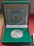 5 гривень Рік Змії  2013