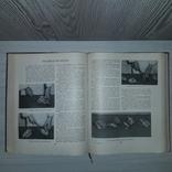 Кулинария 1960 ГОСТОРГИЗДАТ, фото №12