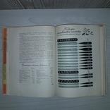 Беседы о питании 1964 А.А. Покровский, фото №12