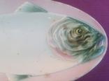 Блюдо-селёдочница Рыба. Песоченская фабрика. 1924-1930-е годы., фото №8
