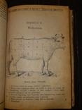 1900-е Книжка кухарская Львов, фото №4