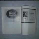 Из коллекций редких книг и рукописей 1981, фото №12