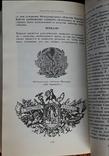 Е. Грибанов Медицина в символах і емблемах, фото №7