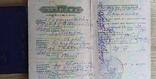 Комплект документов на одного человека №2, фото №5