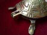 Пепельница - Черепаха. Латунь, фото №3