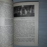 Литературные находки Очерки культурного прошлого 1981, фото №9