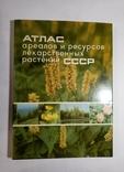 1980 Атлас ареалов и ресурсов лекарственных растений СССР (большой формат), фото №2