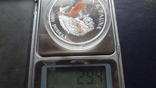 1000 добрас 1995 Сантоме и Принсипе Морской конек 25г цветная серебро  (3.4.11), фото №7