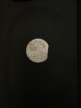 Гданьский грош 1626 года. Сиг. ІІІ Ваза, фото №3